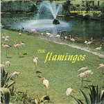 Flamingos LP